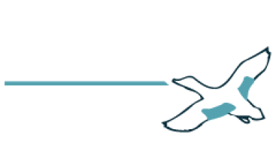 Teal Group publications on the Civil and Defense Aviation Markets