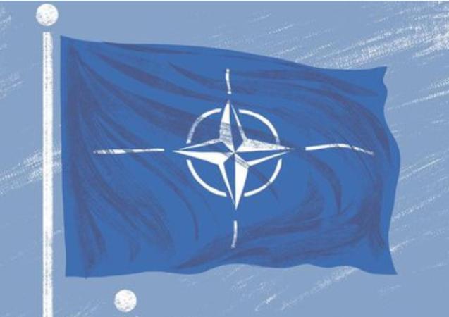 Opinion | The Saturday Debate: Should Canada leave NATO?